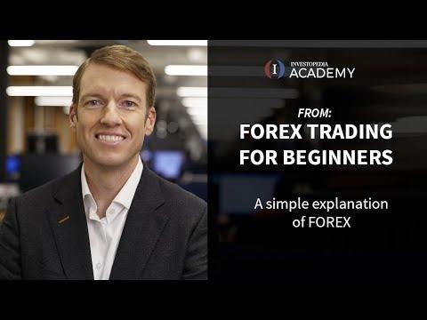 fx trader investopedia