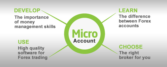 micro fx accounts