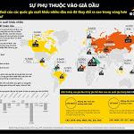 [Infographic] Biến động giá dầu tác động đến tỷ giá mạnh cỡ nào? - BizLIVE